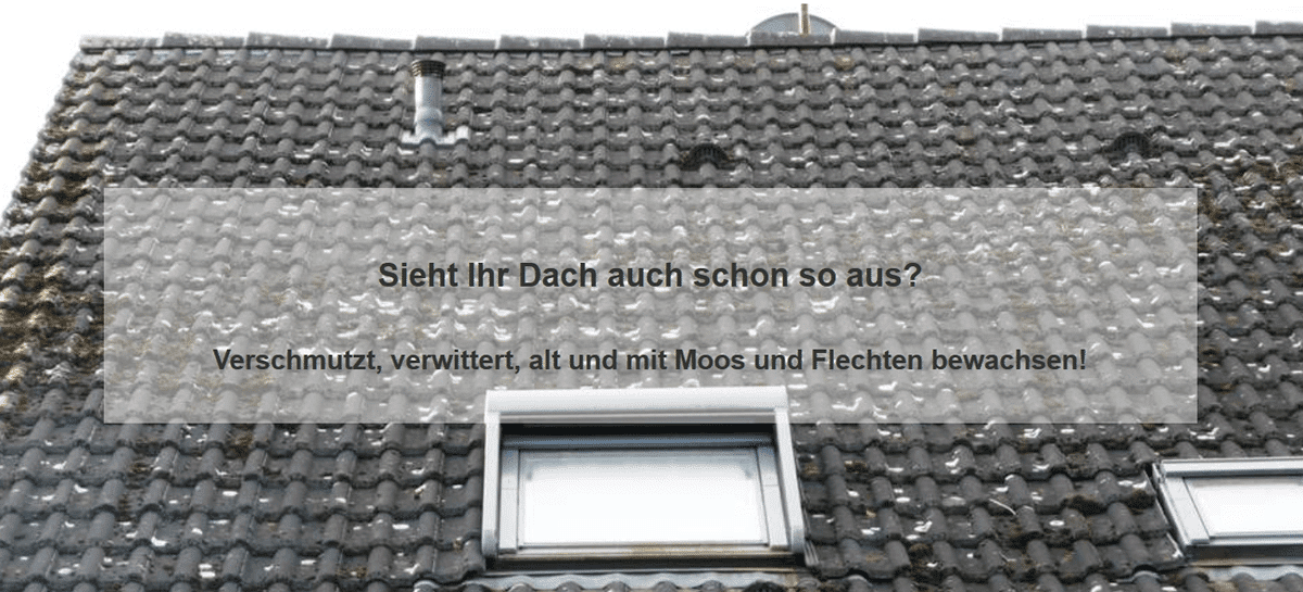 Dachprobleme aus  Heusweiler: Schäden an der Oberfläche, Ziegel, Dachsteine